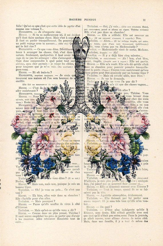 Botanic Bouqeut Flowers Lungs Anatomy Print 1900 by NotMuchToSay