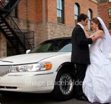 The leader's of San Francisco Corporate Delivery service Kal Limousine, San Francisco Concerts Services and Dinner Services.
