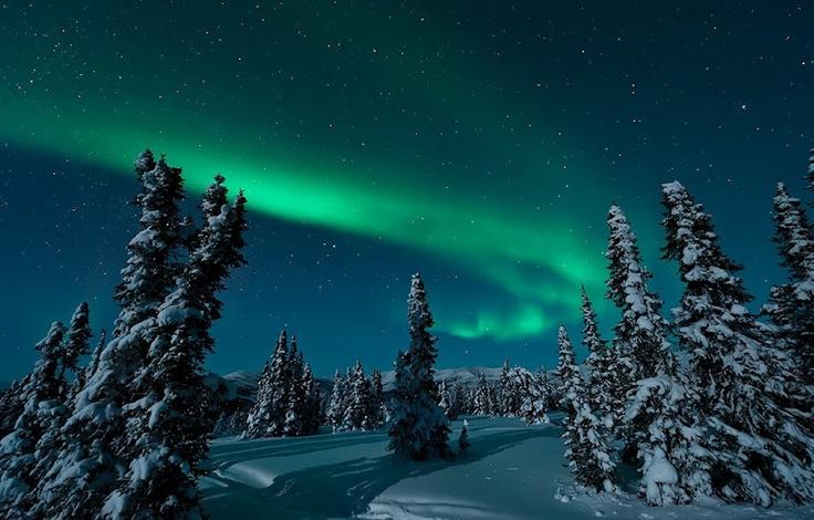 Aurora over Fairbanks, Alaska, USA  February 29, 2012  Image Credit & Copyright: Dennis Mammana: Beautiful Creations, Trav'Lin Lights, Moonlight Aurora, Beautiful Places, Northern Lights, Aurora Borealis, Fairbank Alaska, Amazing Places, Beautiful Pictures