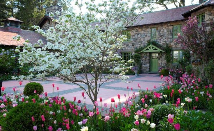 Der Hartriegel im Garten - 18 Ideen für die Gartengestaltung