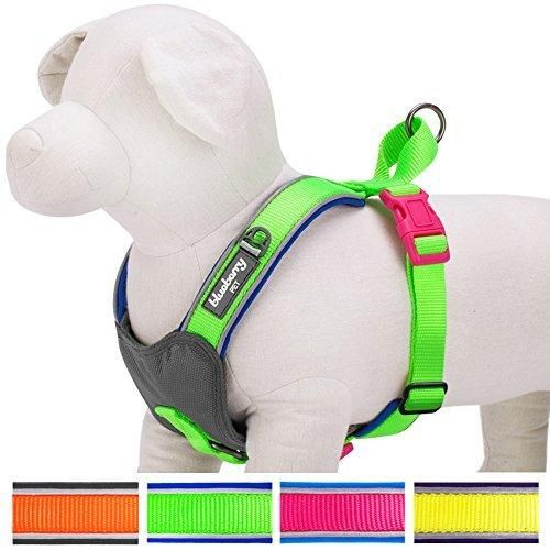 """Blueberry Pet 4 Colors Soft & Comfy Summer Hope 3M Reflective Padded Dog Harness Vest Chest Girth 17"""" - 20"""" Neck 16.5"""" Fluorescent Green Small No Pull Harnesses for Dogs"""