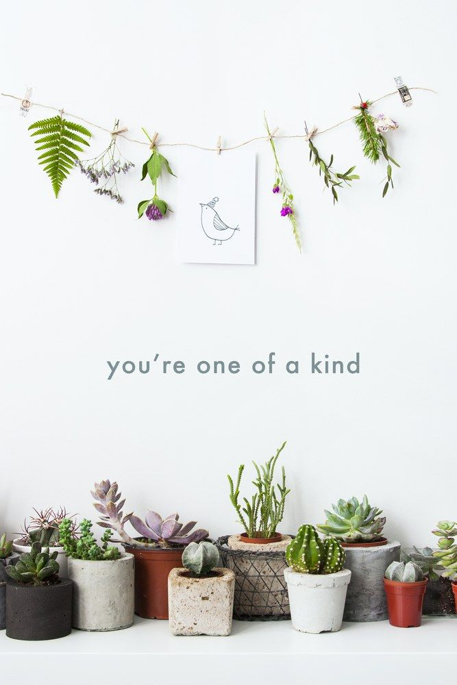 Motivational Poster You Are One Of A Kind With Hanging Flowers And Potted Cactus And Succulents Hipster Scandina Flower Pot Design Diy Flower Pots Pot Designs