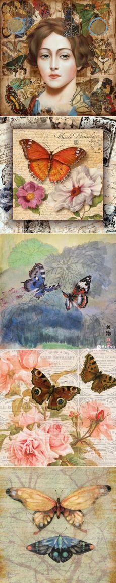 Коллекция картинок: Бабочки