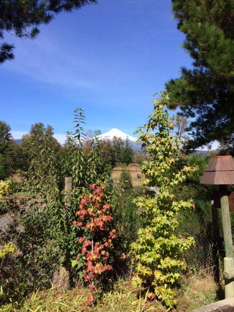 Volcan Villarrica desde Bordelago