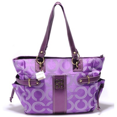 Purple coach diaper bag?! Yes, please, i need this!!!