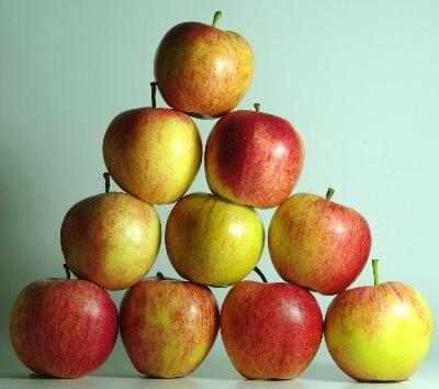 Low Fiber Diet for Crohn's Disease