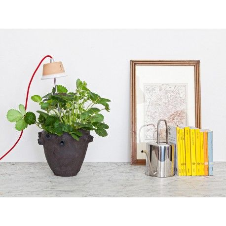 Lampe pour jardiniere d'interieur cynara