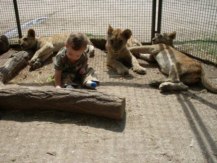 Le zoo de Lujan, le plus controversé du monde