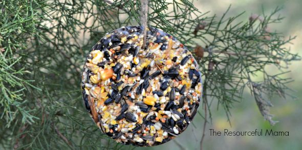 We are making homemade bird seed ornaments for Christmas gifts this year and we have the best recipe.