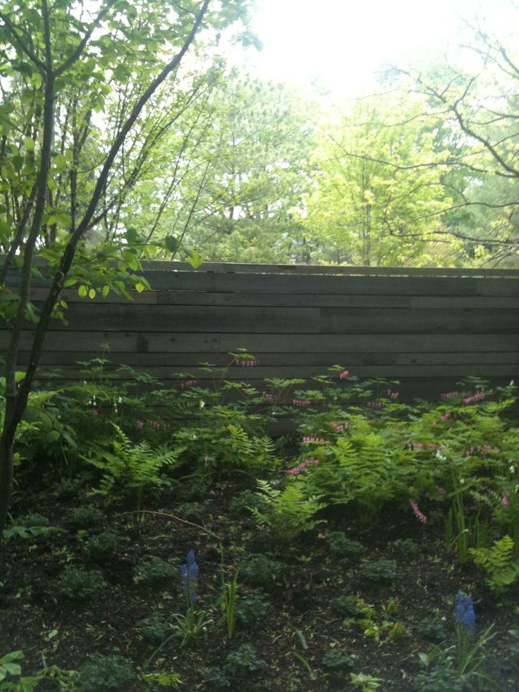 3 Far Sighted Tips Country Fence Paths Backyard Fence
