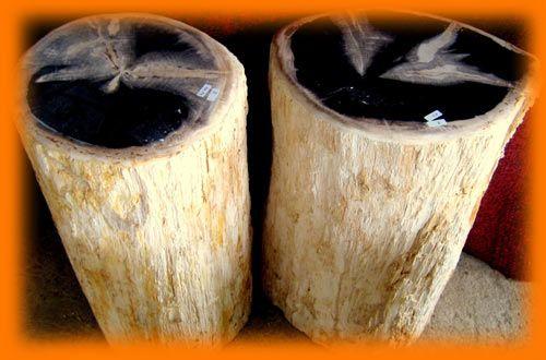 IndoGemstone Petrified Wood Side Tables