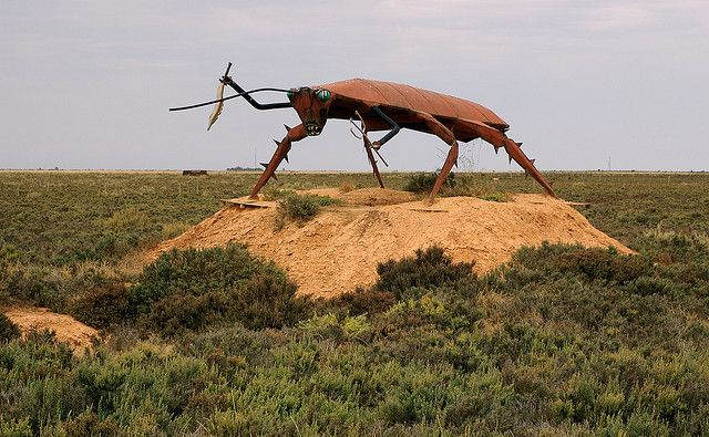 Rusty Roach.jpg by Andy Farnsworth, via Flickr • big cockroach Dublin South Australia • aussie big things