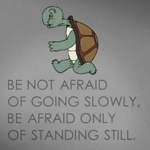 Be not afraid of going slowly, Be afraid only of standing still ~ simple quote but so true ~ motivation