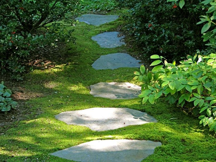 Image detail for -Comfortable backyard design ideas with garden and pool footpath design ...