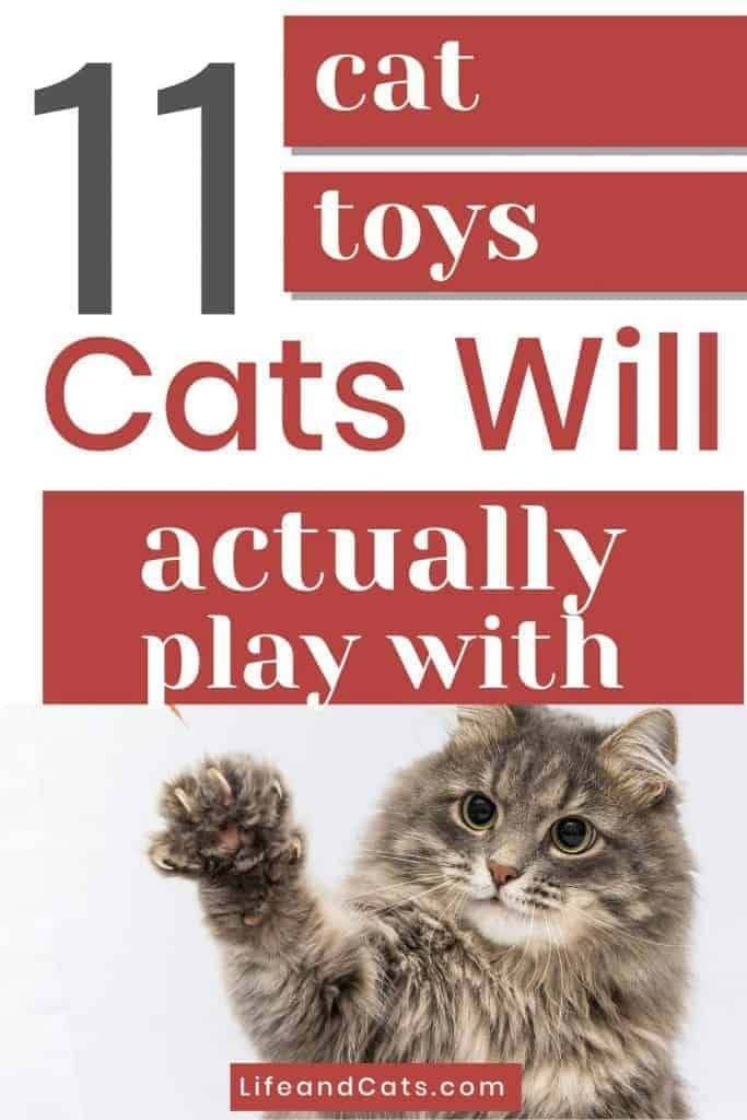 11 Cat Toys A Cat Will Actually Play With Life Cats In 2020 Cat Toys Kittens Gifts Interactive Cat Toys