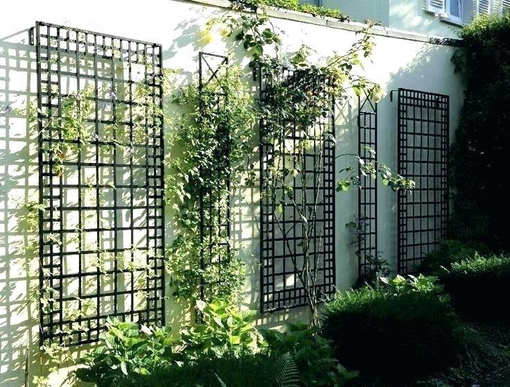 Where To Buy Metal Plant Pot Trellis New Tall Garden Climbing Vine Wall Trellises Jardim Vertical Decoracao Jardim Jardim