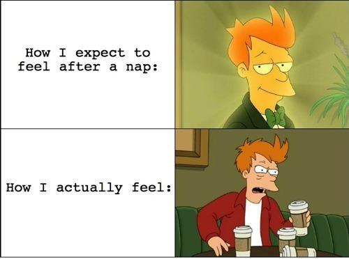funny expectations vs reality nap fry