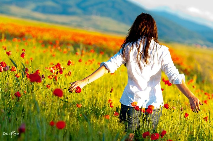 Spring fields in Romania