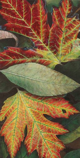 DAN BACICH - LEAF PAINTINGS  Click through to check out his gallery.