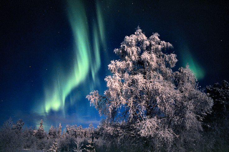 Met wat geluk kan u zelf het betoverende Noorderlicht waarnemen tijdens heldere nachten #finland