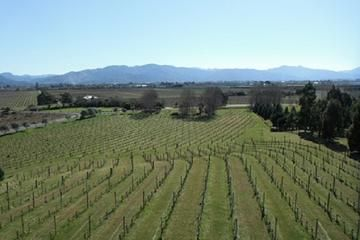 Picton Wine Tasting & Winery Tours
