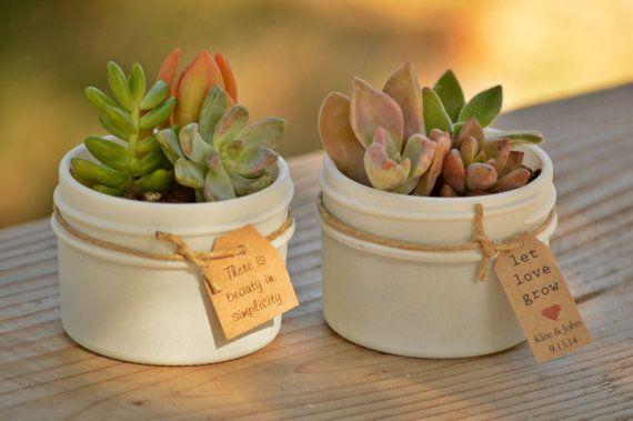 25 faveurs succulentes en Jam en pots de 4 oz avec ficelle blanche ou ivoire avec Let amour grandir tags