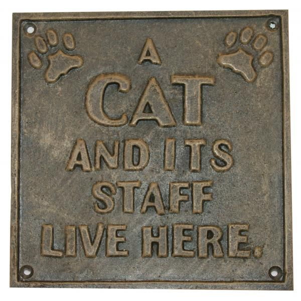 Muurplaat met spreuk over katten