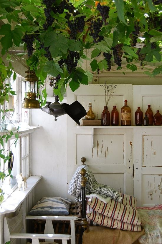 Love this, especially the amber bottles and peeling paint. The foliage inside is gorgeous but probably not achievable or a bit ambitious for a rental..