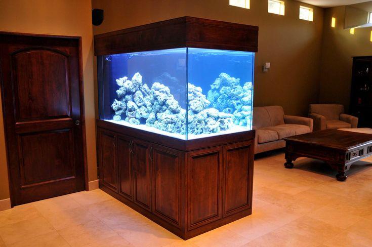 Aqauriums aqua touch custom aquariums awesome fish for Custom fish tanks