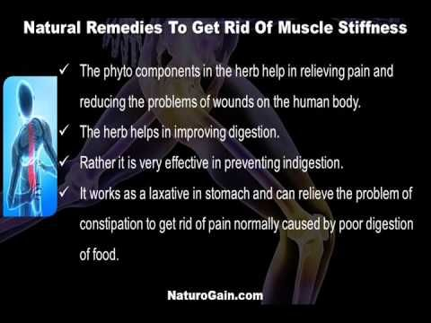 This video describes about how to get rid of joint and muscle stiffness with natural remedies. You can find more detail about Rumoxil capsules at http://www.naturogain.com
