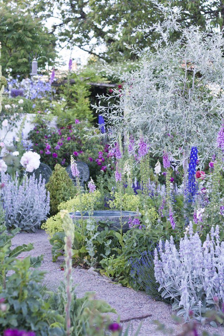 Eine charmante Grünfläche mit lila Blüten # Ländliche Grünfläche # Ideen #G