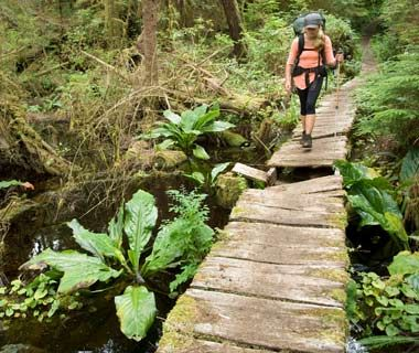 West Coast Trail, Vancouver Island, Canada. One of the scariest hikes in the world...must do it.