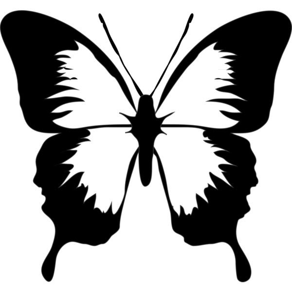 Butterfly Clip Art Black And White | Butterfly ❤ liked on Polyvore