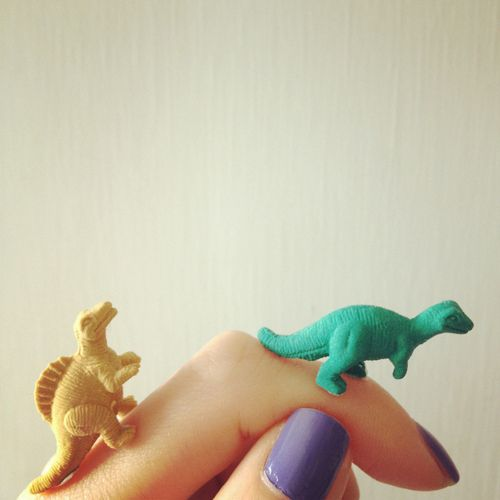 Cute. Colors. Miniature. Inspiration.