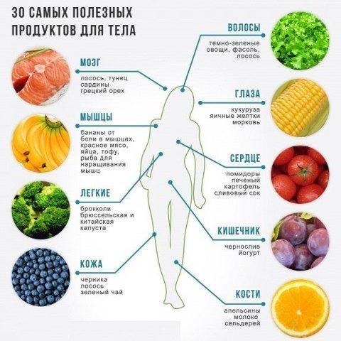 Полезность продуктов для органов