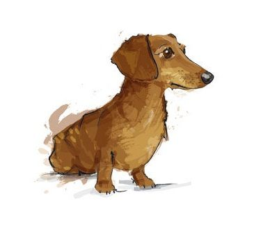 Dachshund Art, a fabulous picture... I want to do one like that (I've done a head of a dachshund already!)