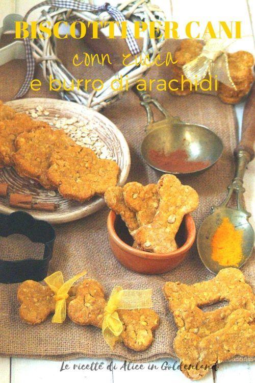 Una fantastica ricetta di biscotti per cani con zucca e burro di arachidi! Anche i tuoi amici a 4 zampe si meritano un dolcetto come premio ogni tanto! Clicca e leggi subito la ricetta, o pinnala sulle tue bacheche e leggila con calma più tardi, e se ti piace fammi sapere cosa ne pensi! Dog treats recipe with peanut butter and pumpkin! Click and read the recipe, or pin it and read later! Do you like it? Let me know ;)