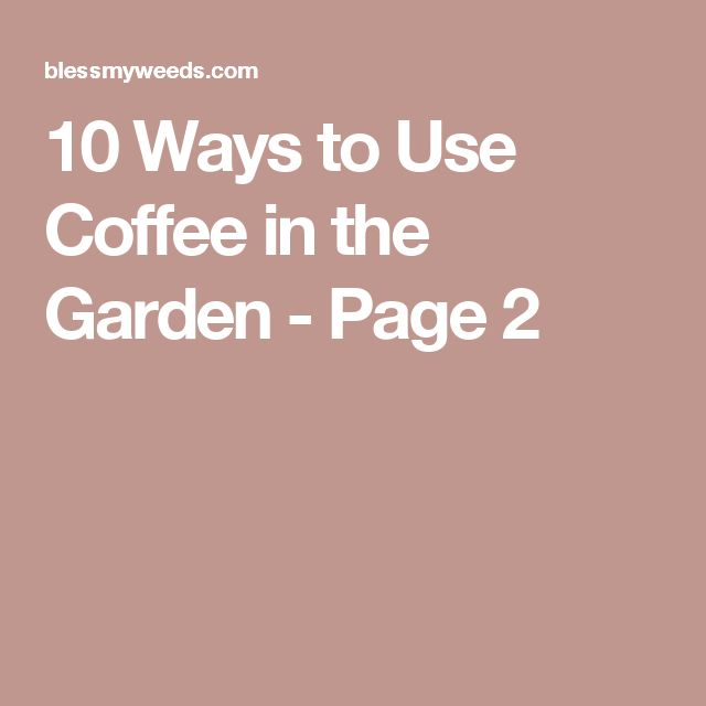 10 Ways to Use Coffee in the Garden - Page 2