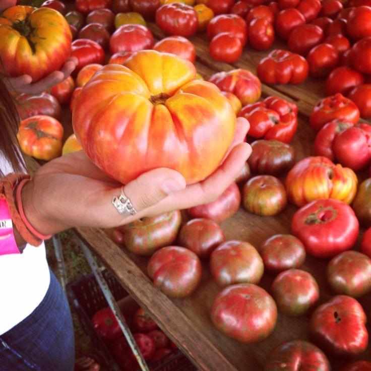 The Plains Farmer's Market