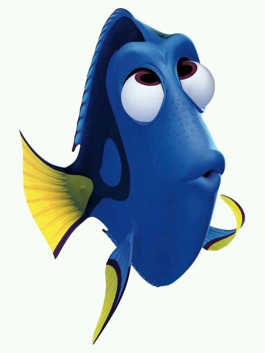 Forgetful Dory Dory Pinterest Feel Like