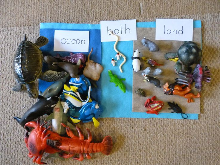 Number Names Worksheets : letter o activities kindergarten Letter ...