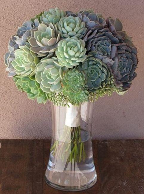 Arranjos de Flores,suculentas