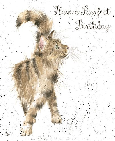 Cat Birthday Card - Wrendale Designs