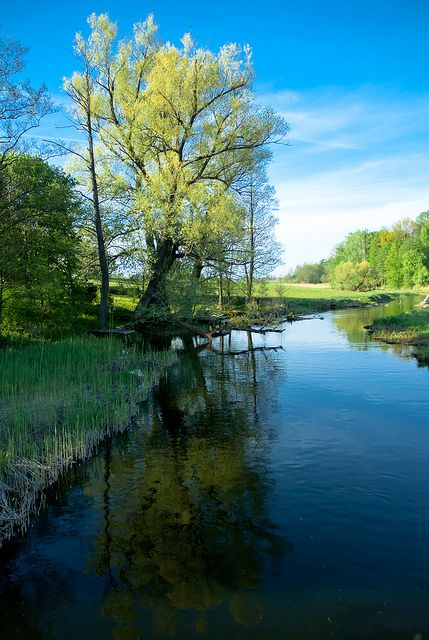 Mazury Lakes.  Mazury is a natural region in northeastern Poland famous for its 2,000 lakes.