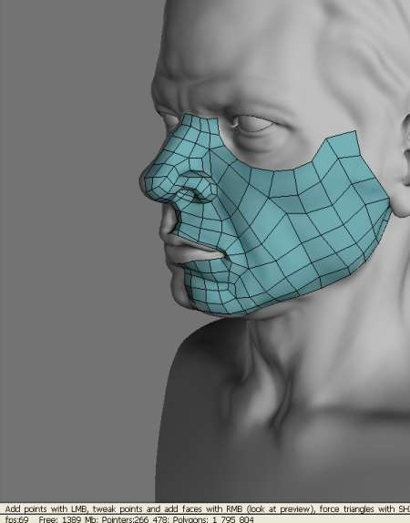 3D Coat Re-topologize tool #polygons