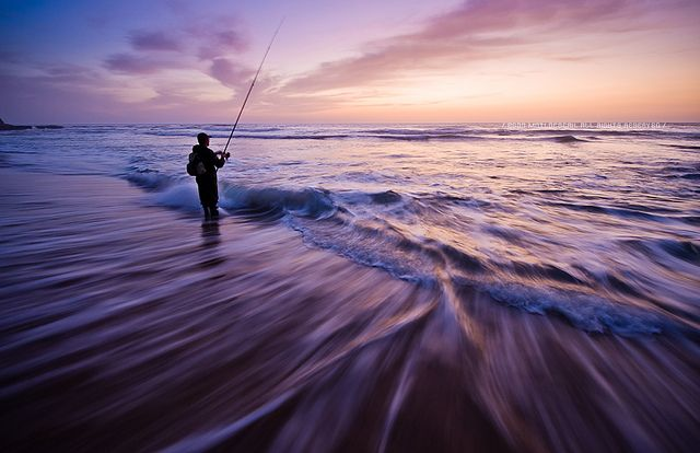 78 best images about beach fishing on pinterest surf for Delaware surf fishing