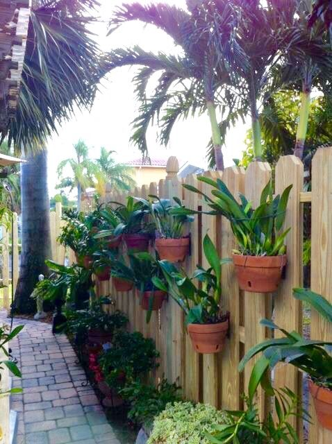 Orchids hanging in clay pots on a privacy fence using hangapot, the hidden hanger. Nice design using angles. #hangingorchids