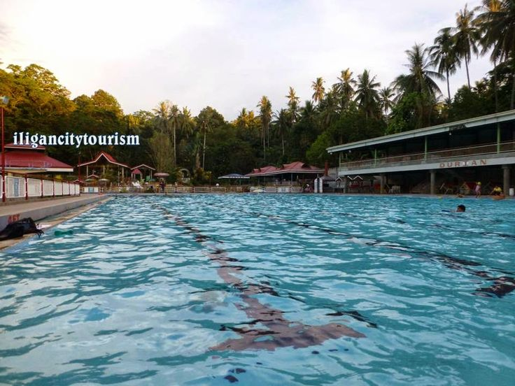 Olympic Size Pool Up To 16 Feet Deep Iligan City Pinterest Swimming Pools