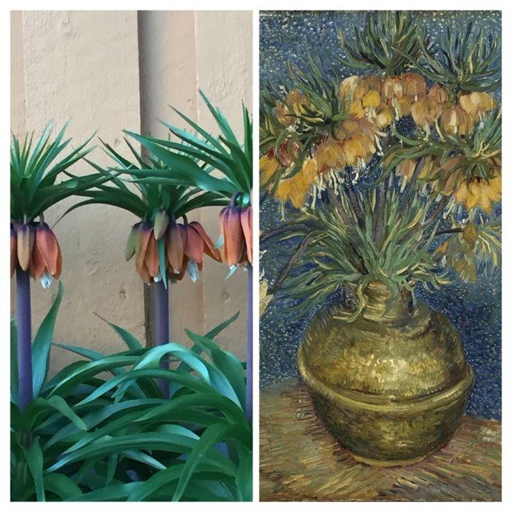 Både jeg og Vincent van Gogh er glad i keiserkroner