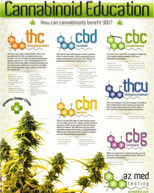 Understanding Cannabis Oil- Conditions that get better with Cannabis Oil.